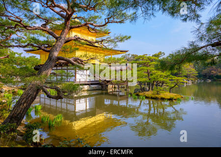 Kyoto, Japan at the Temple of the Golden Pavilion. - Stock Photo