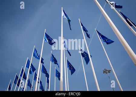 European Union flags flying - Stock Photo