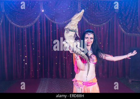 Portrait of Exotic Dark Haired Belly Dancer Wearing Bright Costume Balancing Small Crocodile on One Hand While Standing - Stock Photo