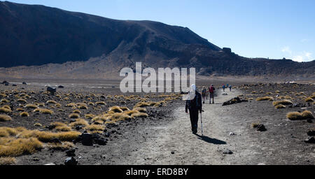 Walkers crossing a crater floor on the Tongariro Alpine Crossing in North Island New Zealand - Stock Photo