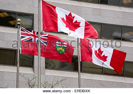 The national flag of Canada and Ontario flag waving or flying in the wind. Windows of  modern building on the background. - Stock Photo
