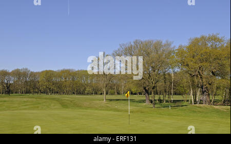 View over 2nd Green with Yellow flag, Thorndon Park Golf Club Brentwood Essex England - Stock Photo
