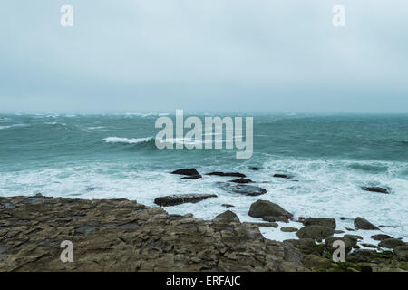 Portland Bill, UK. 2nd June, 2015. UK Weather: a very blustery day initially foggy and windy but weather improving - Stock Photo