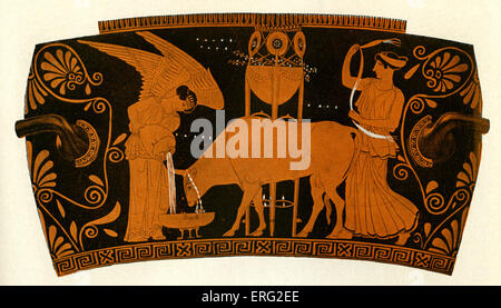 Greek red figure vase showing women caring for a sacrificial bull. Athenian, circa 5th century BCE. - Stock Photo