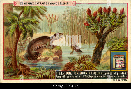 Geological Periods. Published 1892.  Carboniferous period ('Periode carbonifère'). Translation: 'Ferns and horsetails. - Stock Photo