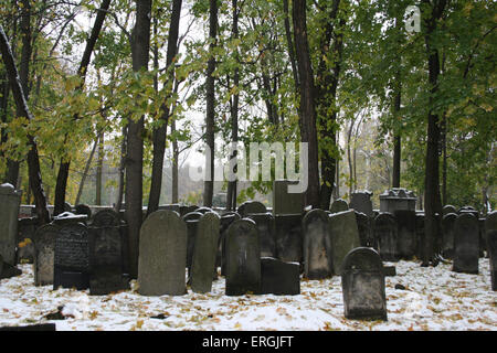 Old Jewish Cemetery Warsaw, Poland.  Gravestones and tombstones overview in the snow. Cemetery founded in 1806 and - Stock Photo