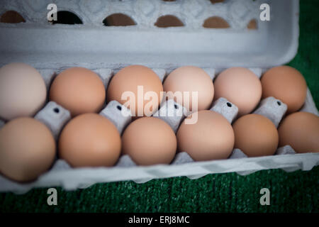 Carton of Organic Eggs at a Farmers Market - Stock Photo