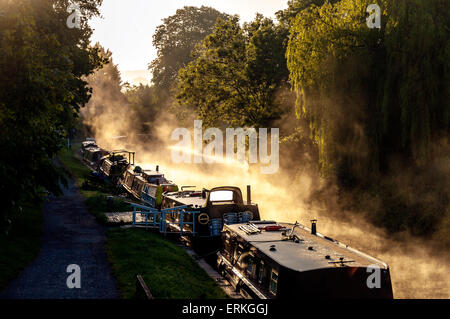 Bathampton, Somerset, UK. 4th June, 2015. UK Weather. Morning mist rises over narrow boats on the Kennet and Avon - Stock Photo