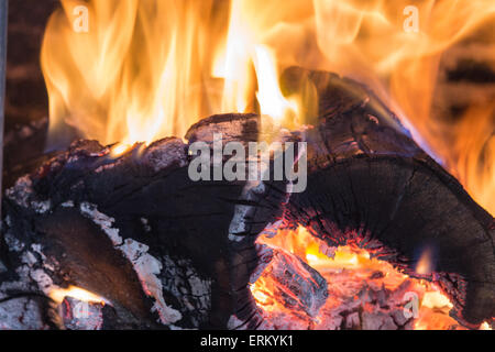 The fire and ember - Stock Photo