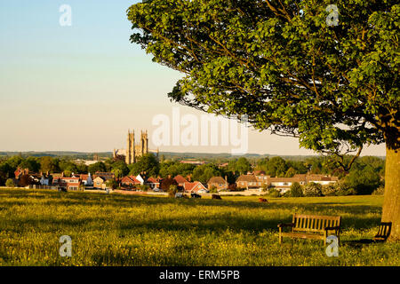 Beverley town & the Minster seem from the Westwood on a June evening. - Stock Photo