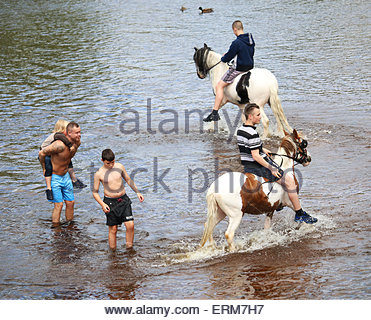 Appleby-in-Westmorland, Cumbria, UK. 4th June 2015. Enjoying the River Eden during the annual event of Appleby Horse - Stock Photo