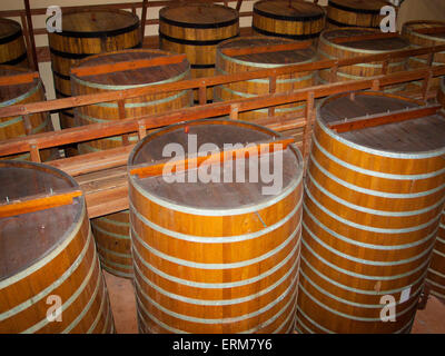 Wine Barrels for Fermenting Wine - Stock Photo