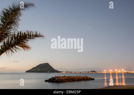 Lights of Mount Maunganui across Tauranga Harbor at night with palm frond swaying in breeze - Stock Photo