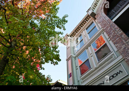 Autumn leaves reflecting in windows of building in historic town of Fairhaven in Bellingham, Washington State, USA - Stock Photo
