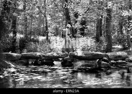 Spain,St. James Way: Pilgrim crossing the Passadeira de Catasol in the fresh forests of Galicia in black and white - Stock Photo