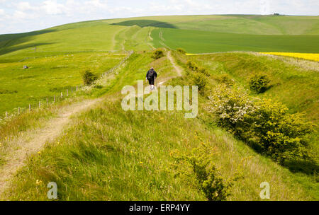 Two men walking along the ditch and embankment of the Wansdyke a Saxon defensive structure on All Cannings chalk - Stock Photo