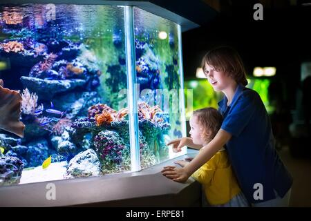 Happy boy and his adorable toddler sister, cute little curly girl watching fishes in tropical aquarium with coral - Stock Photo