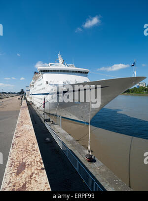 Belgium, Antwerp, MS Magellan docked at the Zuiderterras - Stock Photo