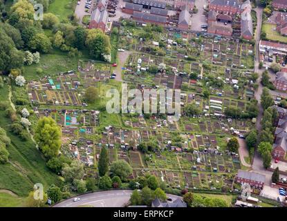 allotment gardens in Bury St Edmunds, Suffolk, UK - Stock Photo
