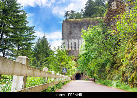 Historic tunnel passing through Oneonta Gorge in Oregon - Stock Photo
