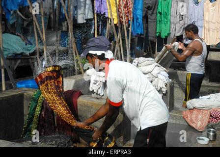 Men washing clothes at Mahalaxmi Dhobi Ghat open air laundromat, Mumbai, Maharashtra, India. - Stock Photo