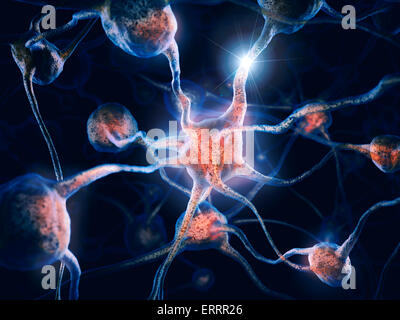 Network of neurons and neural connections, Brain cells, scientific conceptual 3D illustration - Stock Photo