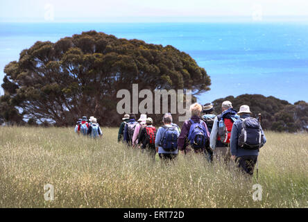 Bushwalkers in Baudins Conservation Park. Kangaroo Island, South Australia. - Stock Photo