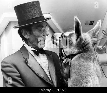 Circus ringmaster John Moore with friendly Llama, Augusto Family Circus, 21st December 1977. - Stock Photo