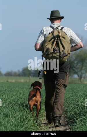 huntsman with Magyar Vizsla - Stock Photo
