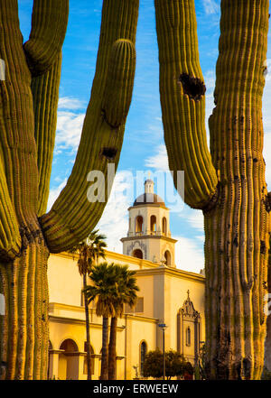 The dome of St. Augustine Cathedral between two large cacti in the foreground - Stock Photo