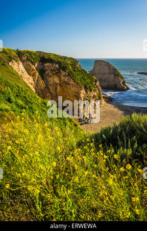 Yellow flowers and view of Shark Fin Cove in Davenport, California. - Stock Photo