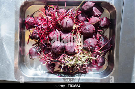 High angle view of beet in tray on kitchen counter - Stock Photo