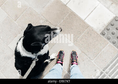 Low section of man standing with mixed-breed dog on footpath - Stock Photo