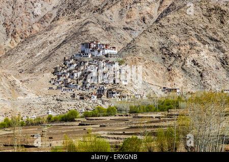 Chemrey Monastery in Leh, Ladakh Region, India - Stock Photo