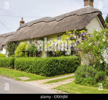 Thatched Cottage in the village of Martin, Hampshire, England, UK - Stock Photo