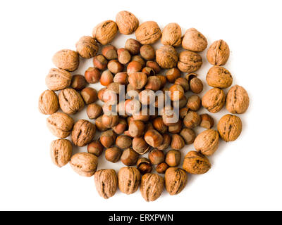 Group of walnuts and hazelnuts against white background - Stock Photo
