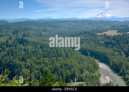 Jonsrud Viewpoint forest and Mt. Hood in Sandy Oregon. - Stock Photo