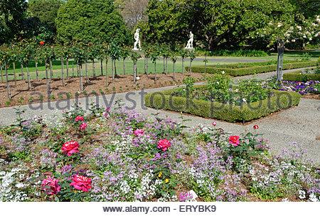 Royal Botanic Gardens, Sydney, New South Wales, Australia, - Stock Photo