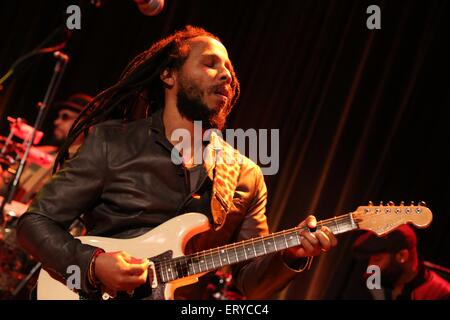 Ziggy Marley performs at the 17th Annual Samuel Waxman Cancer Research Foundation's Benefit Dinner and Auction at - Stock Photo