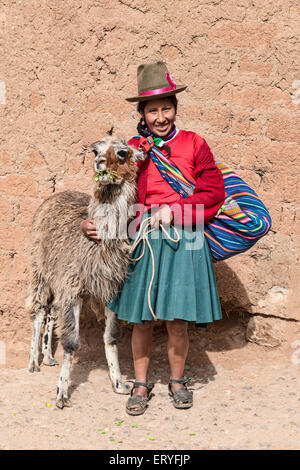 Indigenous woman with a Llama (Lama glama), Cusco, Peru - Stock Photo