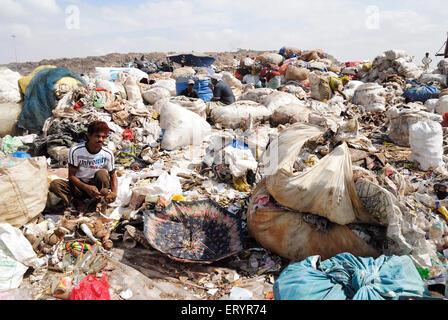 Rag picker collecting garbage in dumping ground ; Deonar ; Bombay Mumbai ; Maharashtra ; India - Stock Photo