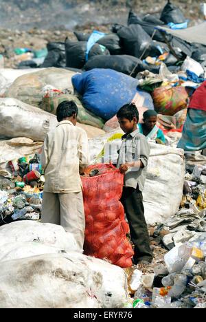 Rag picker collecting garbage in dumping ground ; Deonar ; Bombay Mumbai ; Maharashtra ; India NO MR - Stock Photo