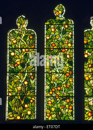 Stained glass pomegranate 'Tree of Life' by Morris & Co. in E window of the Stanley memorial chapel, St Cybi's Church, - Stock Photo