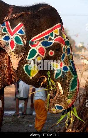 Colourful drawings on face of elephant seen on streets of Ahmedabad ; Gujarat ; India - Stock Photo
