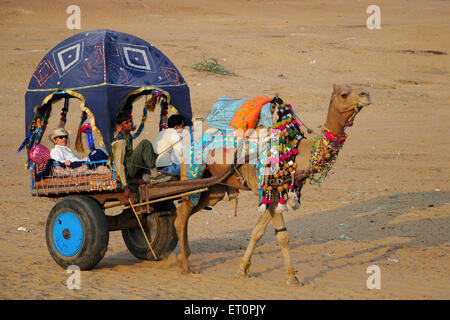People travelling in camel cart for Pushkar fair ; Rajasthan ; India - Stock Photo