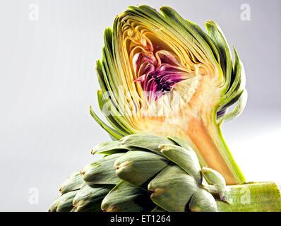 Globe artichoke cut in two, on neutral background. - Stock Photo
