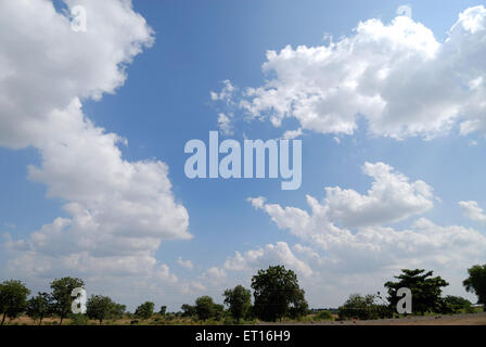 Summer white clouds on blue sky and trees landscape - Stock Photo