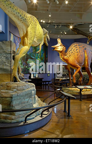Dead Sea Scrolls San Diego Natural History Museum