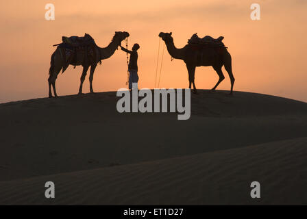 Man with camels standing on sand dune of khuhri ; Jaisalmer ; Rajasthan ; India - Stock Photo