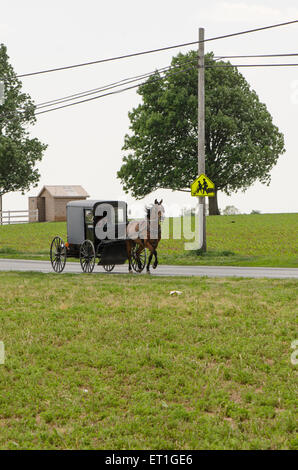An Amish family riding in a traditional Amish buggy in Lancaster county, Pennsylvania, USA - Stock Photo